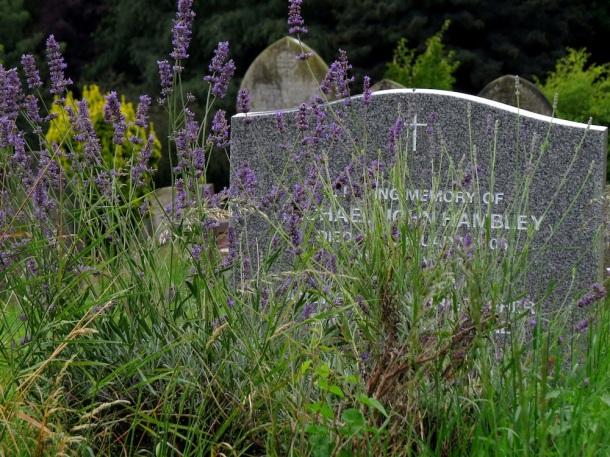 lavender grave